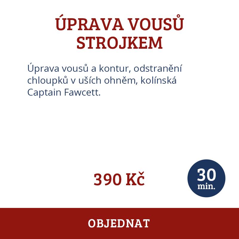 sluzba-04-cz